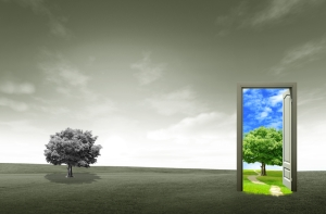 Gray field with open door in colour to illustrate change