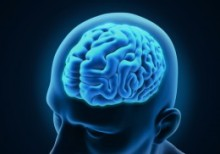 The Human Brain inside a mans head all in a blue tint